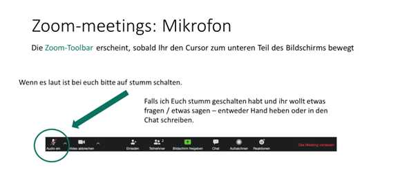Zoom Screenshot Mikrofon